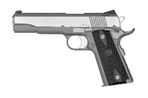 """Dan Wesson Dan Wesson Heritage RZ-45 Stainless 45 Auto, 5"""" Barrel"""