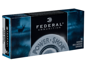 Federal 243 Win, 100 Gr Soft Point