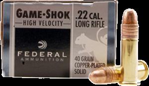 Federal 22 LR, 40 Gr Lead Round Nose