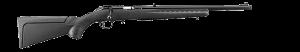 Sturm Ruger & Co. American Rimfire Compact